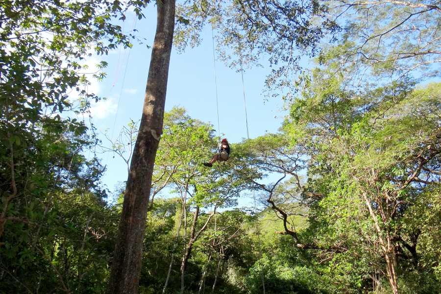 CongoCanopy.com Original & Extreme Zip Line Combo
