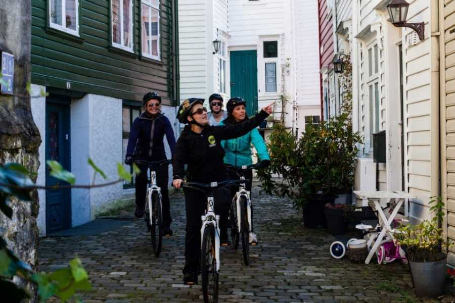 Norway Insight Bike to the Fjord and the coast of Norway