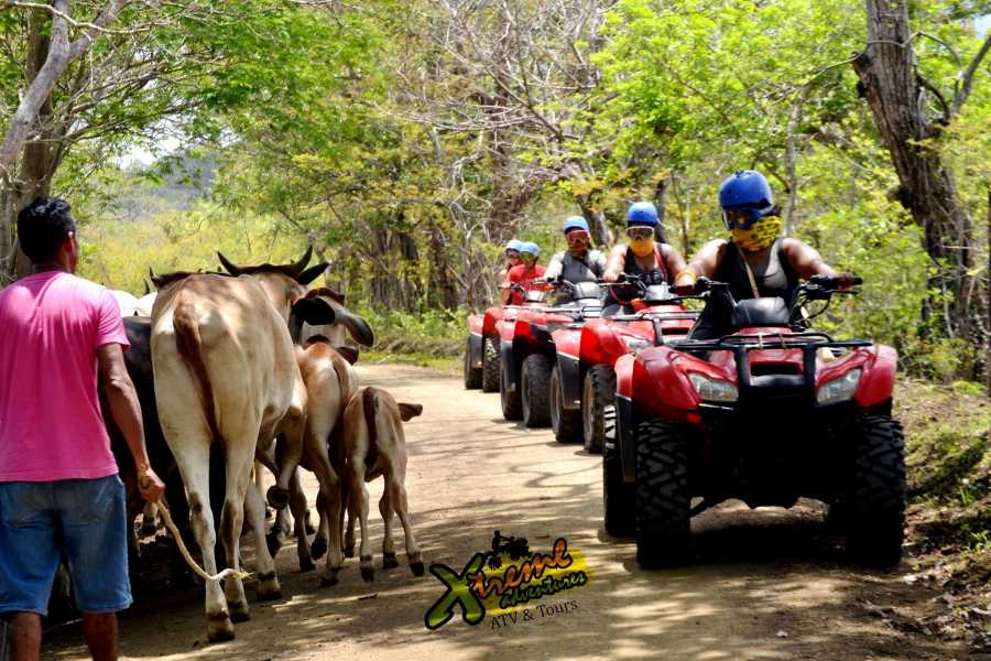 Congo Canopy ATV Mountain Jungle Tour