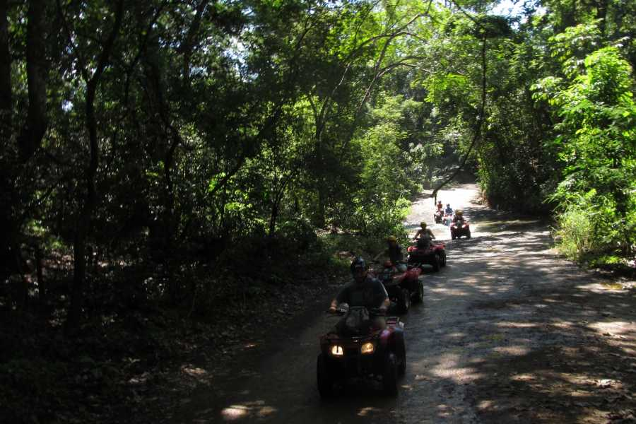 CongoCanopy.com ATV Mountain Tour