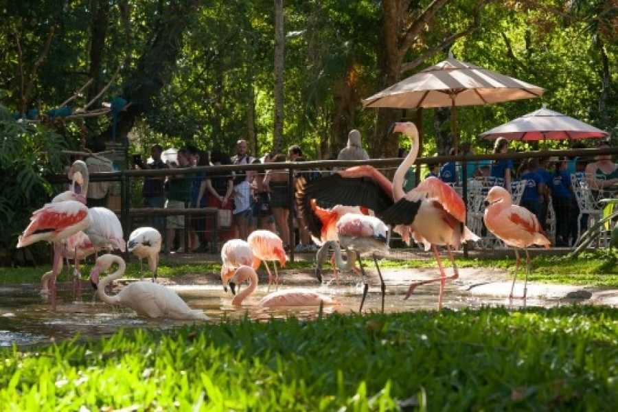 Check Point Parque de las Aves