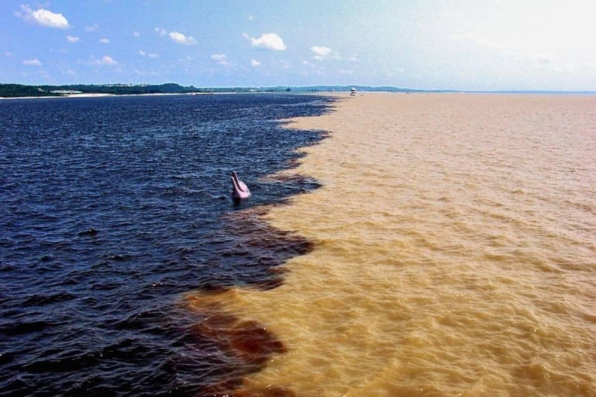 Check Point Encontro das Águas em Manaus - com almoço