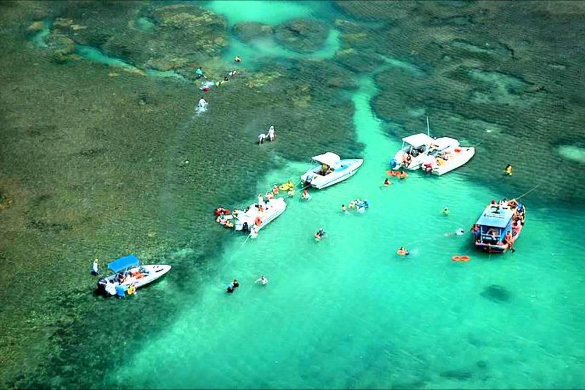 Check Point City Tour com Praia de Camurupim em Natal