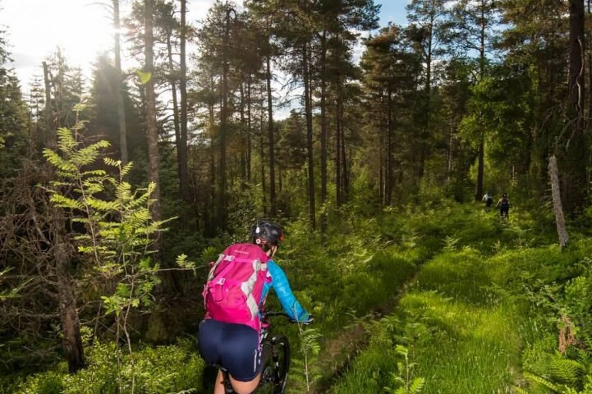 Gloppen Aktiv Guided mountain bike tours