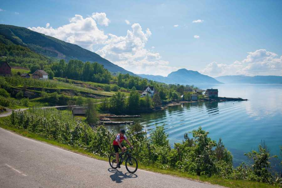 Norway Insight Bike along Hardangerfjord