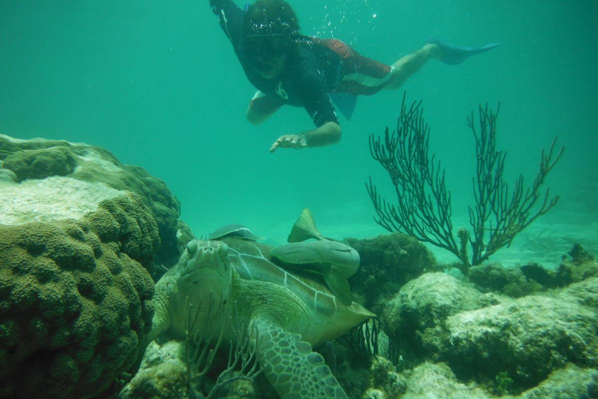 Cancun Vacation Experts SNORKELING ADVENTURE