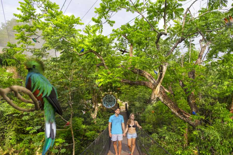 Cancun Vacation Experts XCARET BASIC