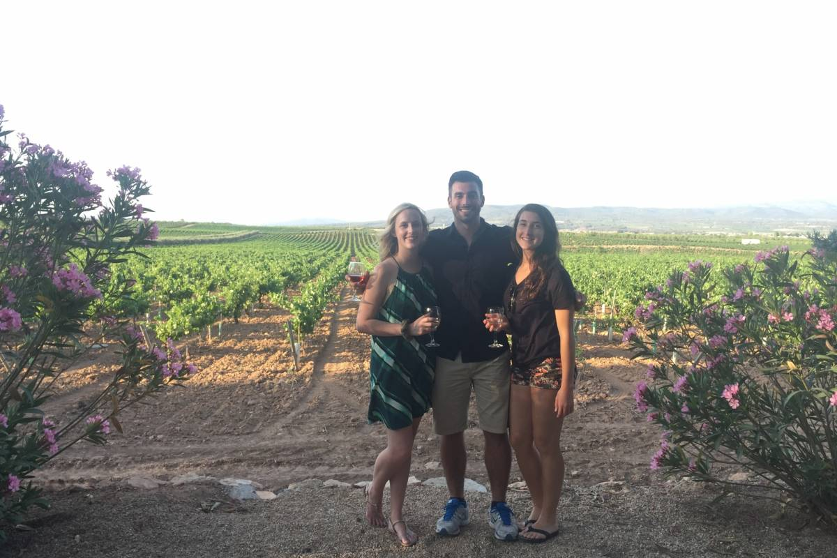 4.0 Tours GO Barcelona: Evening in Requena Wine Region