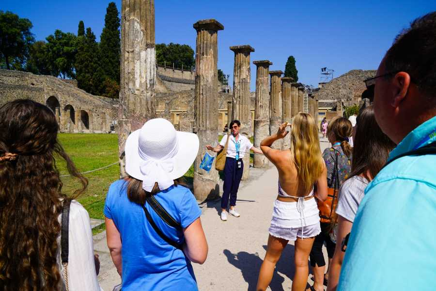 Travel etc Tour guidato di Pompei e il Monte Vesuvio da Sorrento