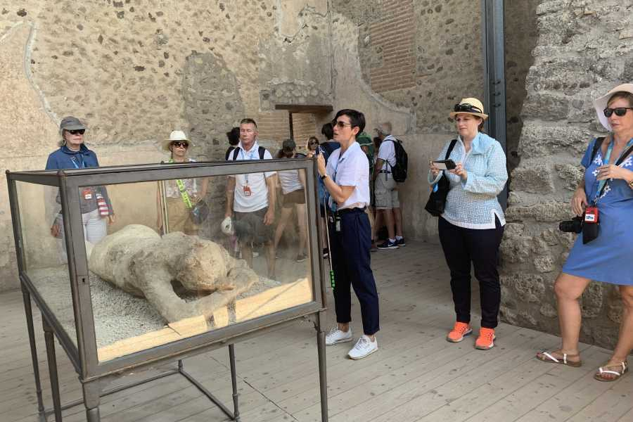 Travel etc Pompeii & Vesuvius Experience from Sorrento