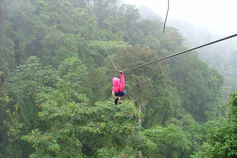 Red Lava TSC Canopy zip lining tours