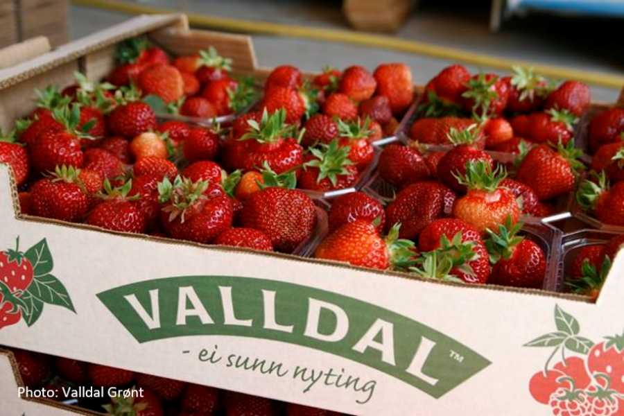 FRAM Round trip to Valldal adventure valley
