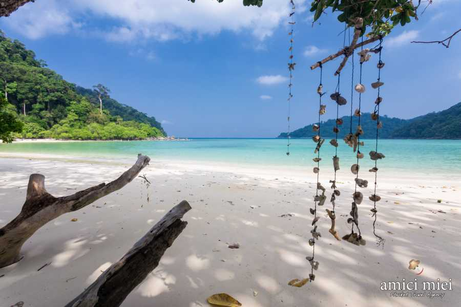 AMICI MIEI PHUKET TRAVEL AGENCY SIMILAN & SURIN ISLAND 2 DAYS 1 NIGHT from Phuket - AM101