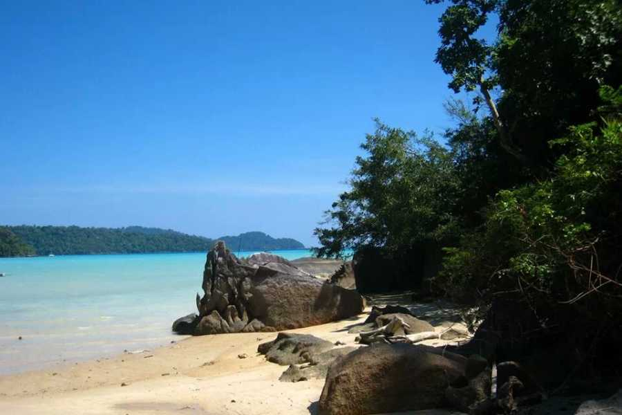 AMICI MIEI PHUKET TRAVEL AGENCY Surin Island one day Trip Premium Service from Khao Lak AM011