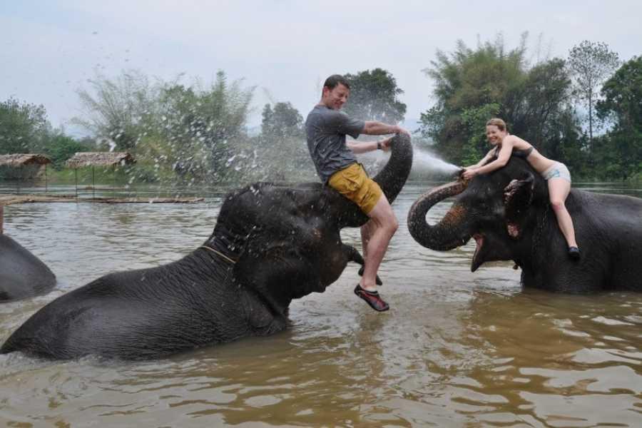 AMICI MIEI PHUKET TRAVEL AGENCY Kanchanaburi: floating market and elephant baths AM038