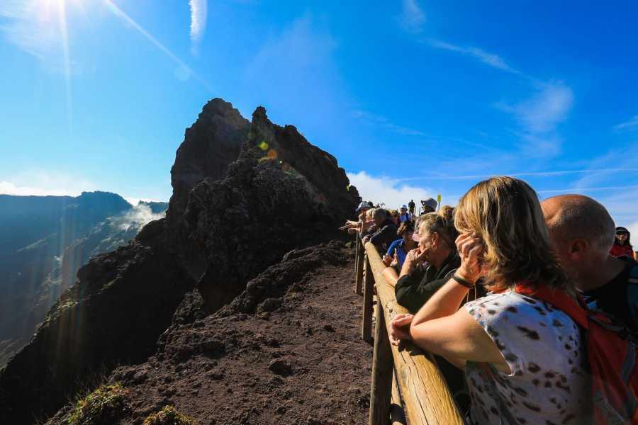 Travel etc Pompeii & Vesuvius Experience from Naples