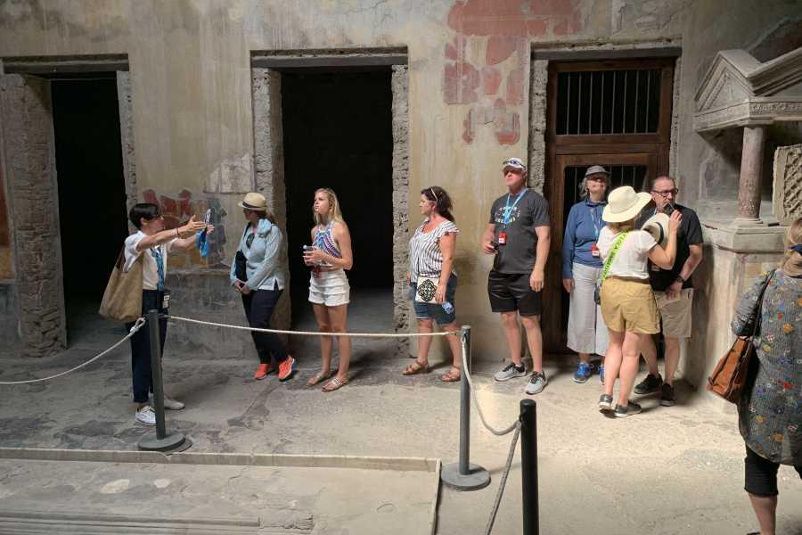 Travel etc Excursión de un día a las ruinas de Pompeya y al Volcán Vesubio desde Nápoles