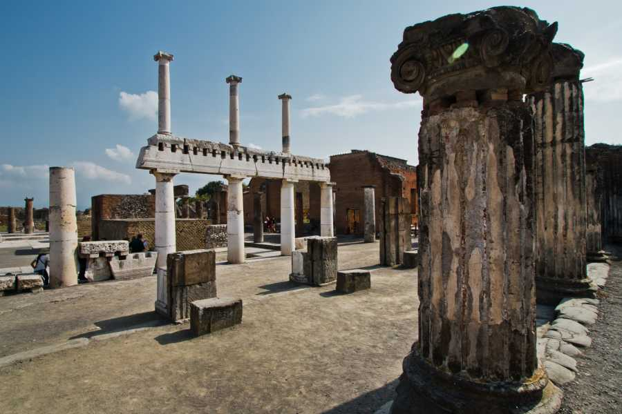 Travel etc Pompeii & Vesuvius from Naples