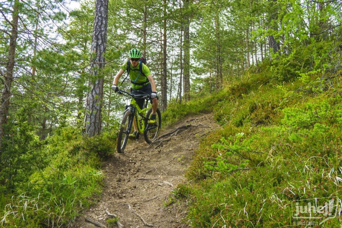Nature Trips Slovenia: MTB 3 Days Adventures from Ljubljana