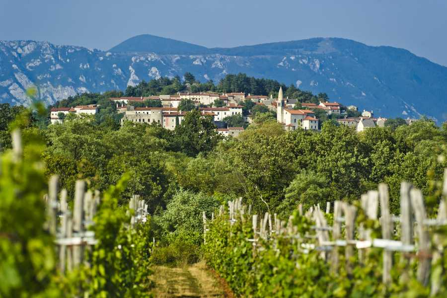 Nature Trips Food & Wine Tasting Holiday in Slovenia