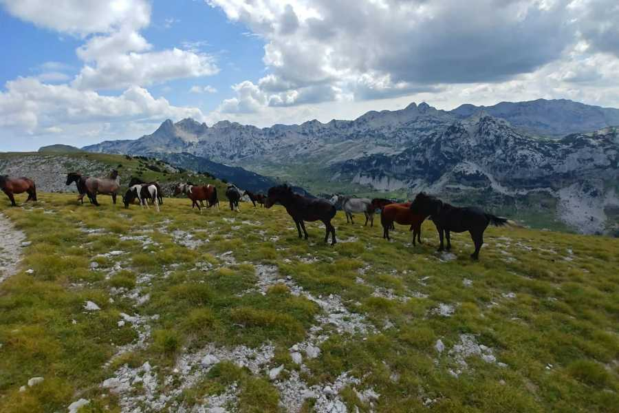 Visit Konjic Hiking Prenj mountain - Velika kapa