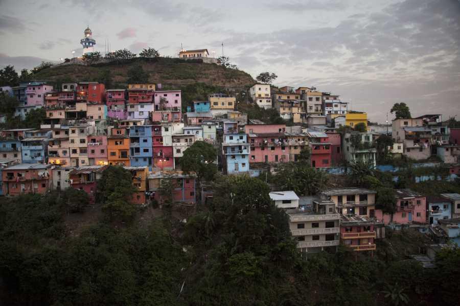 Gray Line Ecuador Traslado Guayaquil / Cuenca vía Cajas