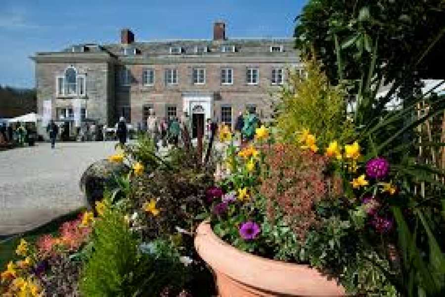 Oates Travel St Ives CORNWALL GARDEN SOCIETY SPRING FLOWER SHOW AT BOCONNOC SUNDAY 8TH APRIL