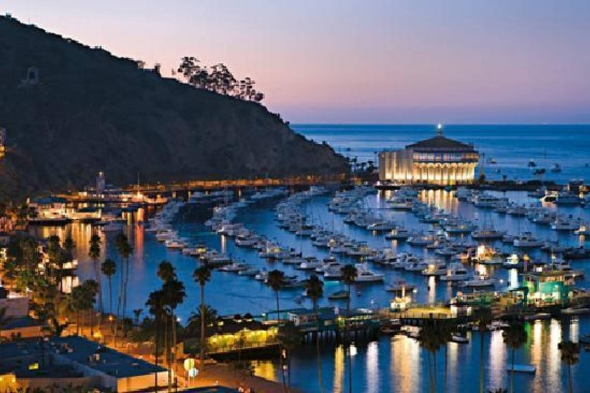 Dream Vacation Builders Catalina Express + Zipline  + Round Trip Transfers From Anaheim/Orange County