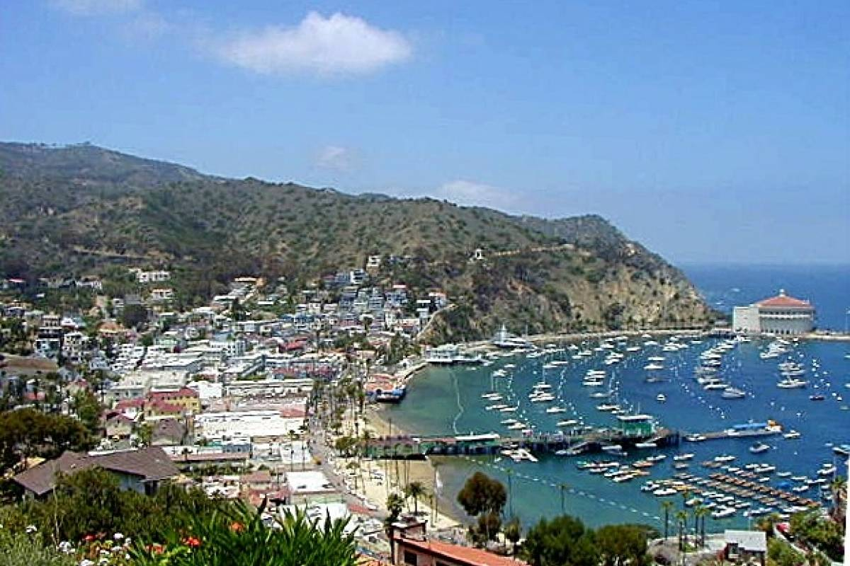 Dream Vacation Builders Catalina Avalon Scenic Tour  + Round Trip Transfers