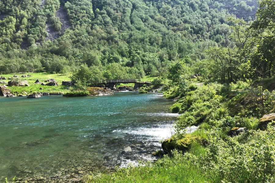 rosendalevent BONDHUS LAKE AND GLACIER