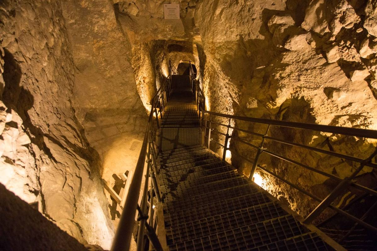 SANDEMANs NEW Jerusalem Tours Ancient Jerusalem: City of David Tour