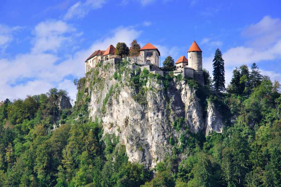 ToDoInSlovenia, brand of Kompas d.d. Lake Bled & Medieval Town of Radovljica with Lunch - Taste of Tradition