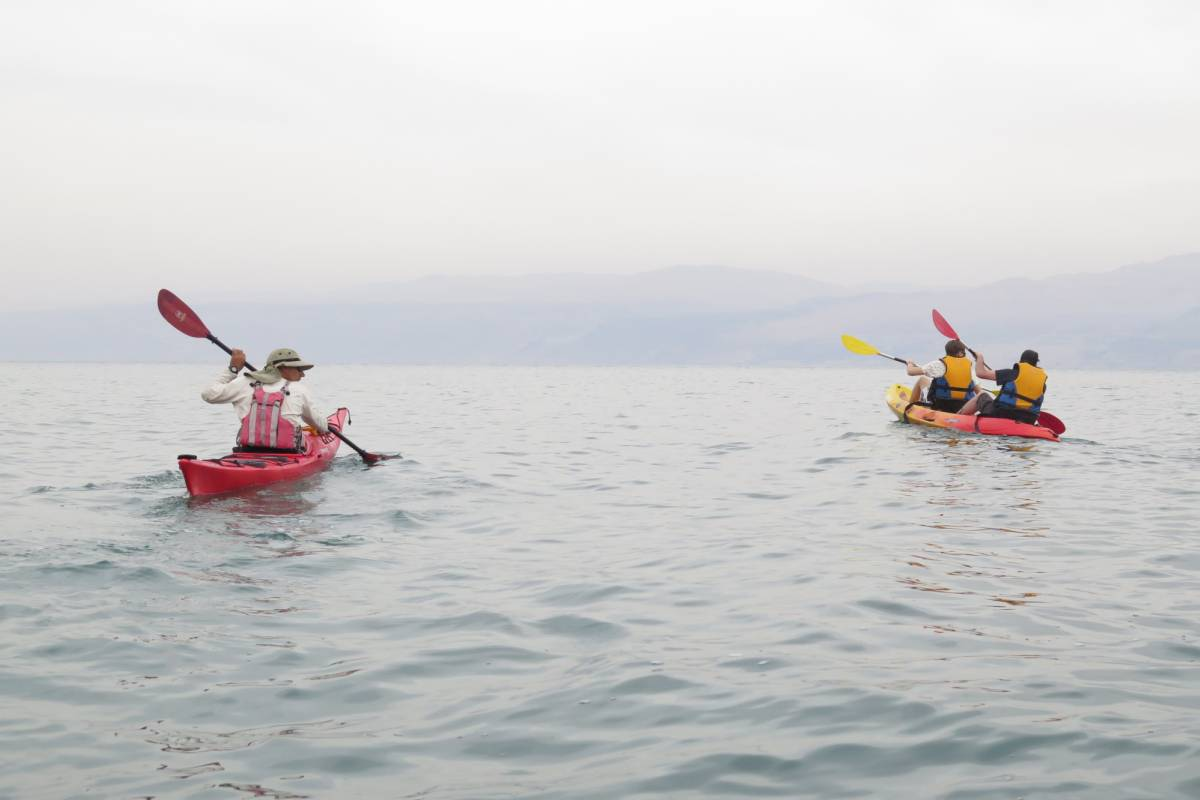 Wild-Trails Kayaking in the Dead Sea