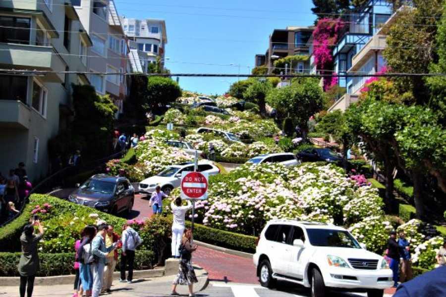 Dream Vacation Builders Hop-On Hop-Off Double-Decker Night Tour Pass San Francisco