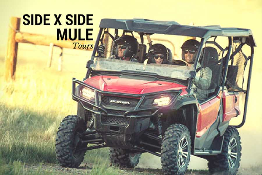 CongoCanopy.com Side X Side Honda MULE Beach Tour