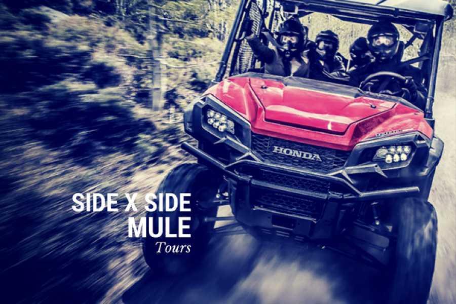 CongoCanopy.com Side X Side Honda Beach Tour