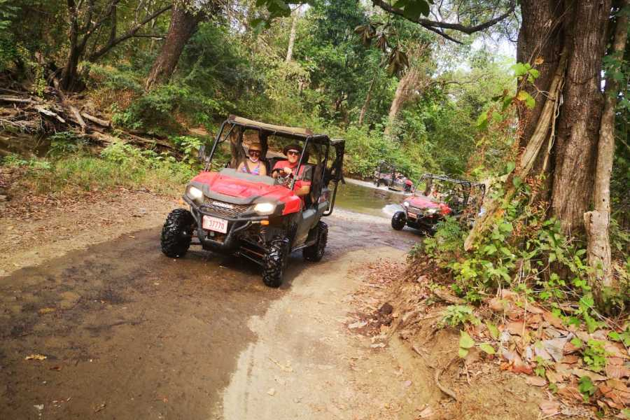 Congo Canopy Side X Side Honda Mountain Tour