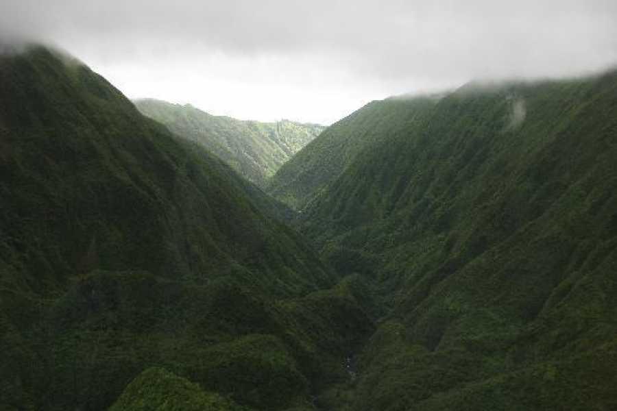 Dream Vacation Builders Blue Hawaiian West Maui Mountains Tour