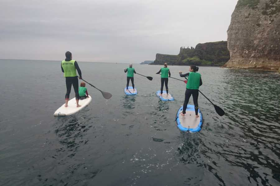 Alive Surf School Stand-Up Paddleboard Lesson