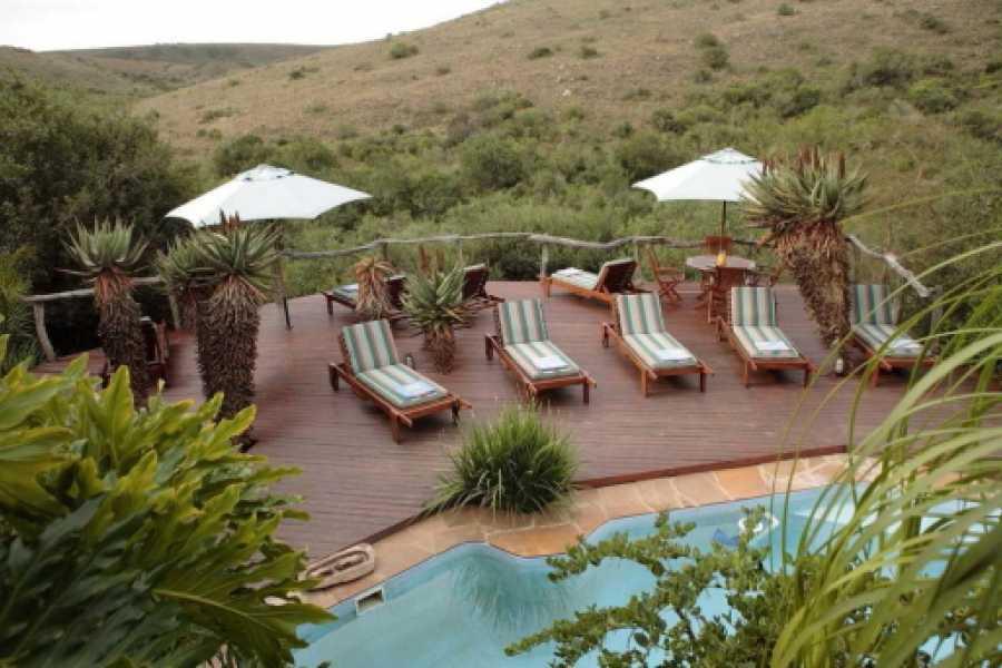 BOOKINGAFRICA.NET Port Elizabeth - The Beach Hotel