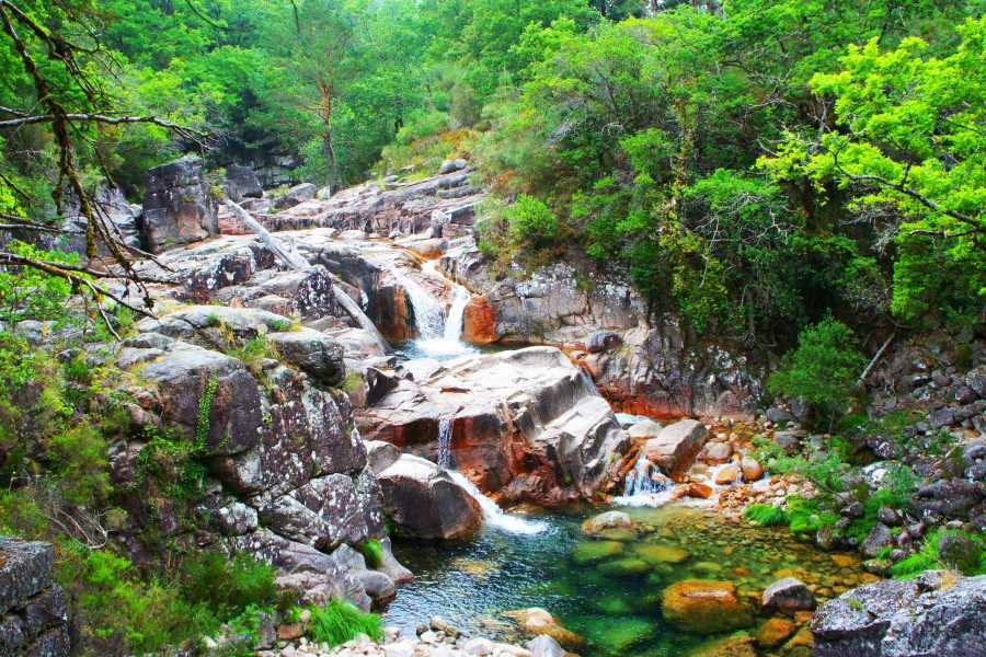 Gerês Holidays Tour: Waterfalls 4h