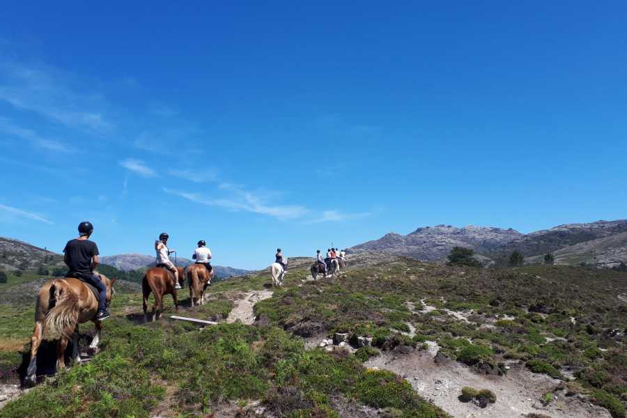 Gerês Holidays 1h Horseback ride