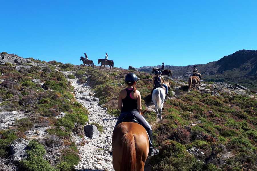 Gerês Holidays Passeio a Cavalo de 1h