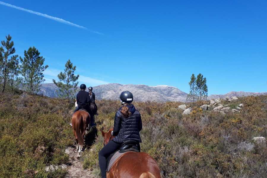 Gerês Holidays 2h Horseback Ride