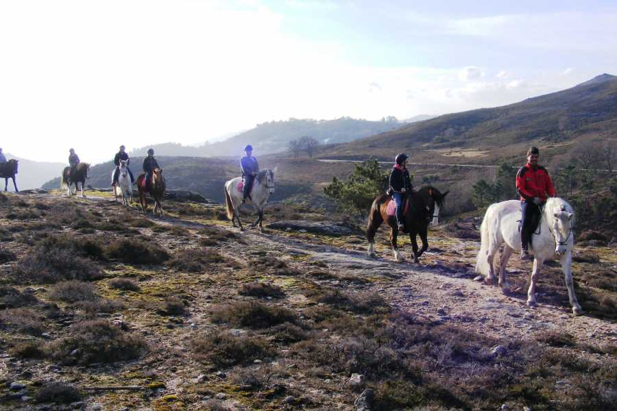 Gerês Holidays 1 day Horseback Ride - Castel's Trail