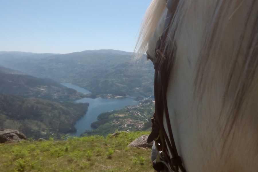 Gerês Holidays Trilho do Castelo - 1 Dia a cavalo