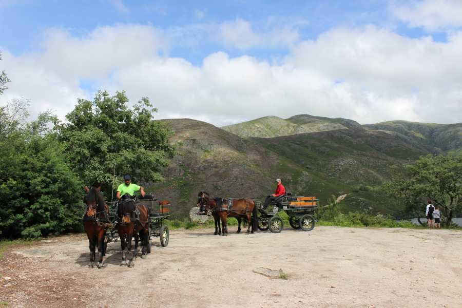 Gerês Holidays Horse Drawn Carriage Tour