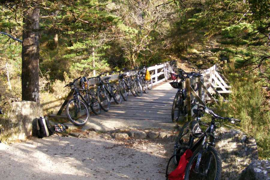 Gerês Holidays Mountain Bike rental