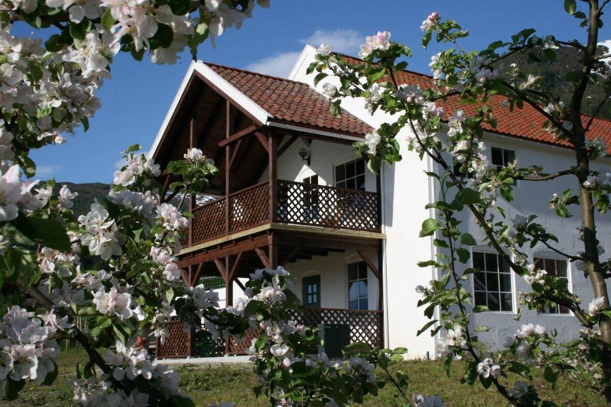 Ciderhuset Fjelltur og cidersmaking