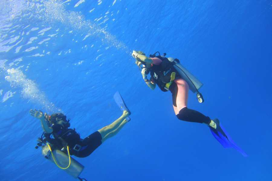 Cancun Vacation Experts BUCEO 2 TANQUES EN COZUMEL DESDE PLAYA DEL CARMEN